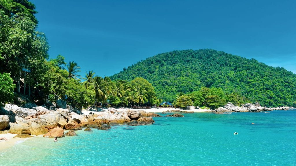 Palm Tree and Mountains in Pulau Perhentian