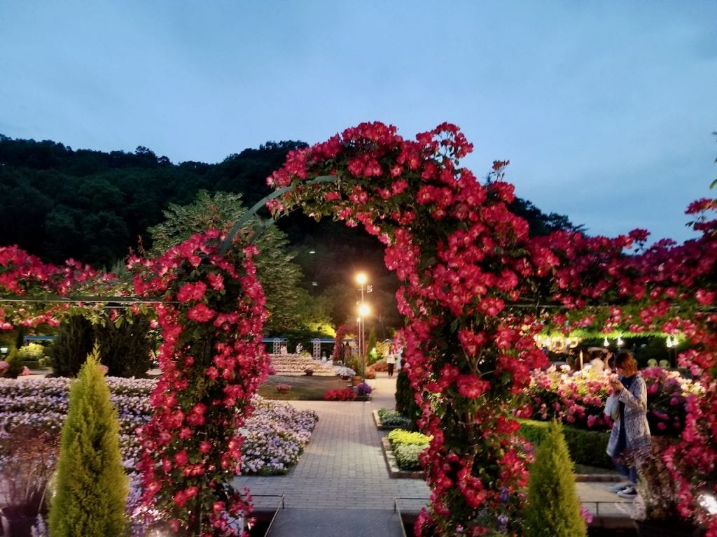 Ashikaga Flower Park looks different at night.