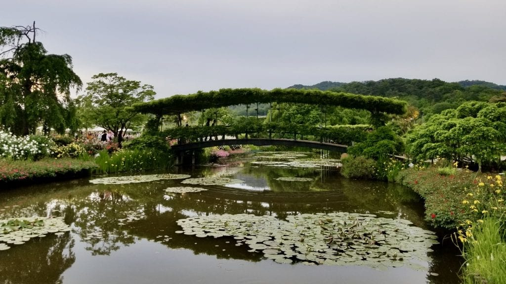 A traditional Japanese bridge in Ashikaga Flower Park.