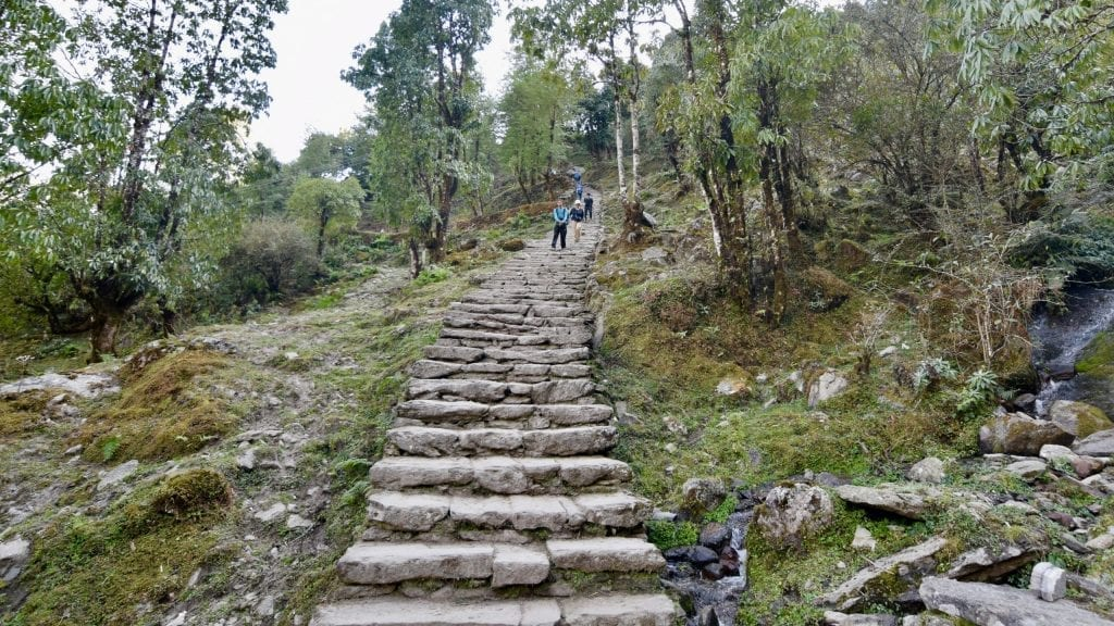 One of the most difficult parts of Annapurna Base Camp is the long stairs of Chhomrong.