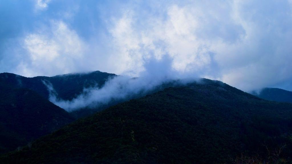 Misty mountains in Montseny.