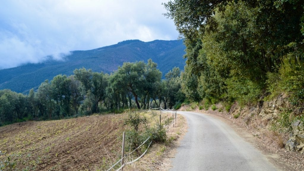 Montseny is a fantastic day trip from Barcelona.