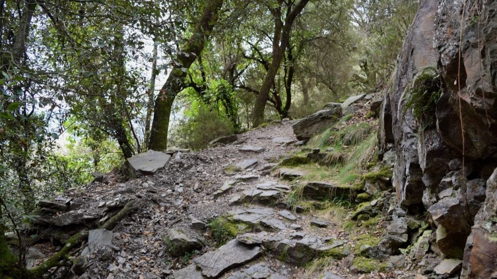A hike to Montseny as a day trip from Barcelona is worthy.