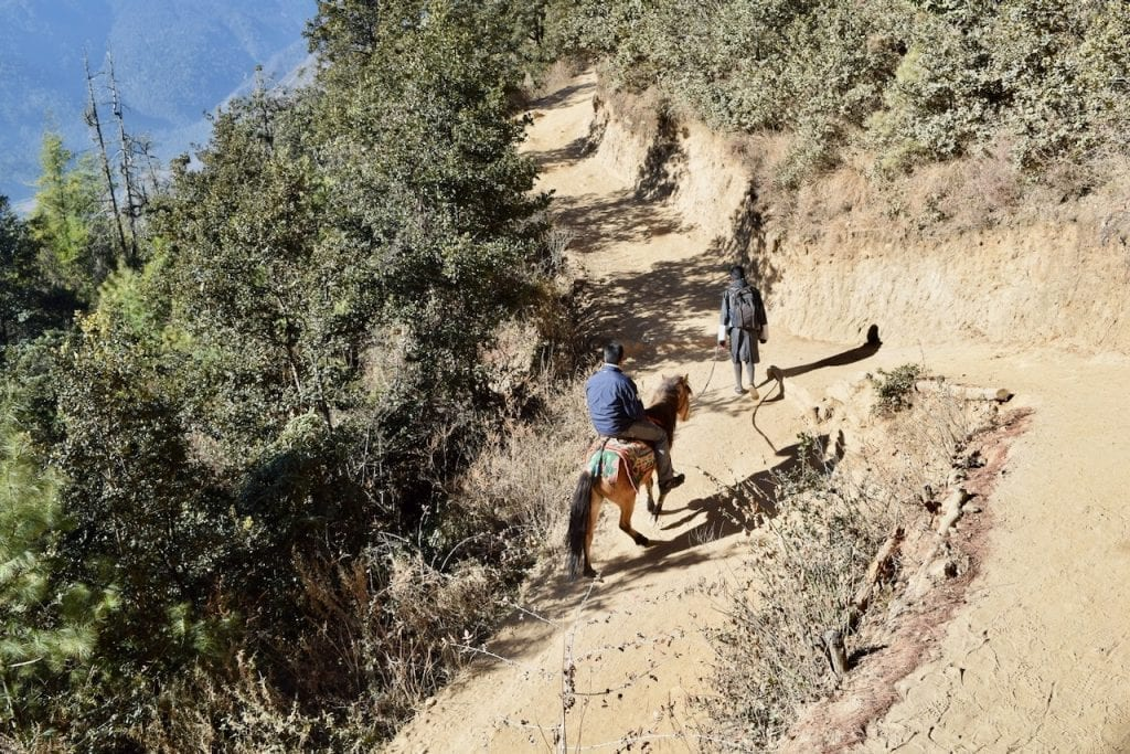 You can rent horses up to a certain point during Tiger's Nest Trek.
