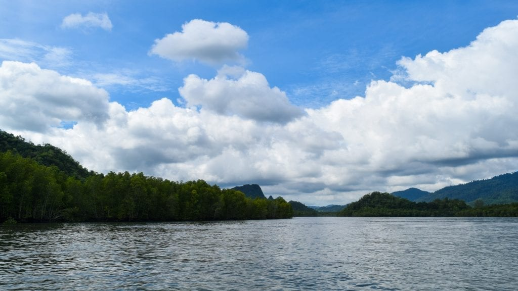 Open ocean with forest during half day mangrove trip in Langkawi