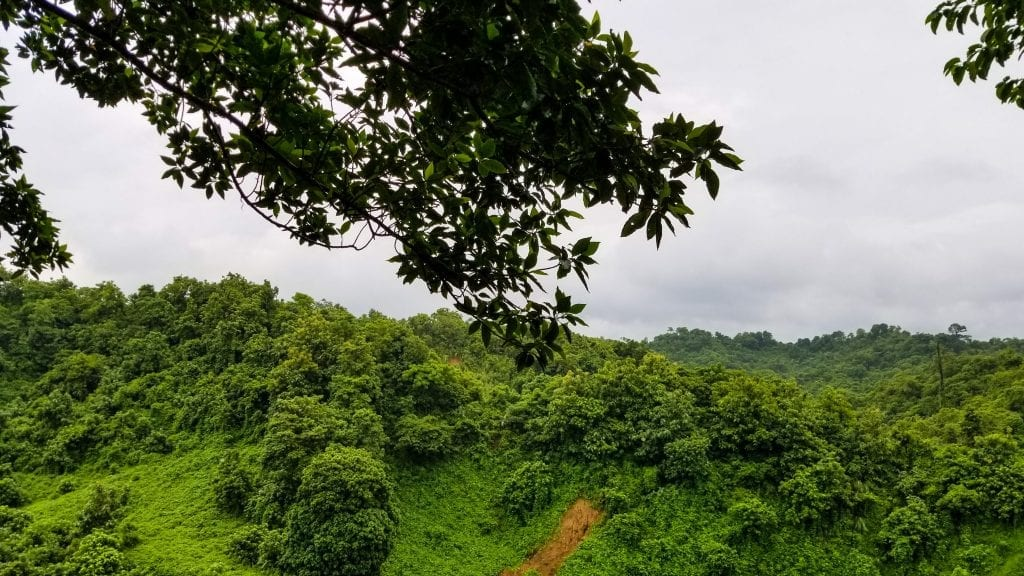 Green Hill in Himchari