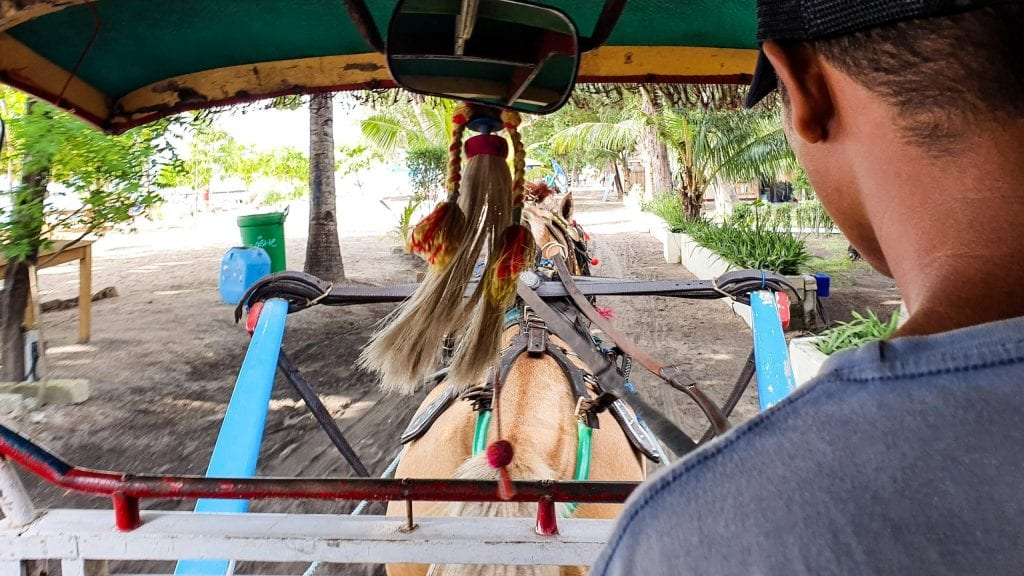 Horse Carriage in Gili Air