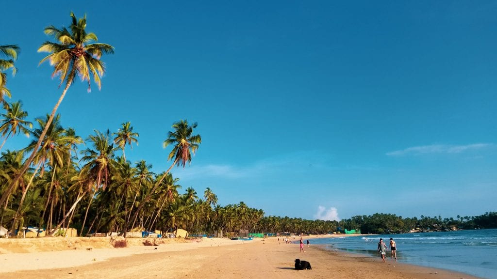 Palolem Beach in Goa is among best Places to visit Goa in 2 days.