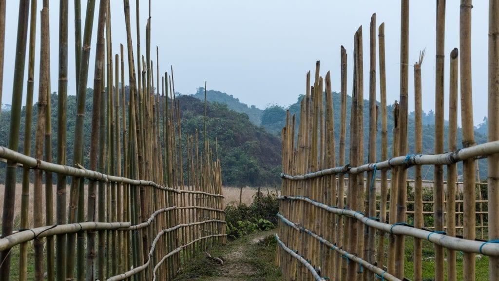 Bamboo Tunnel in Birishiri