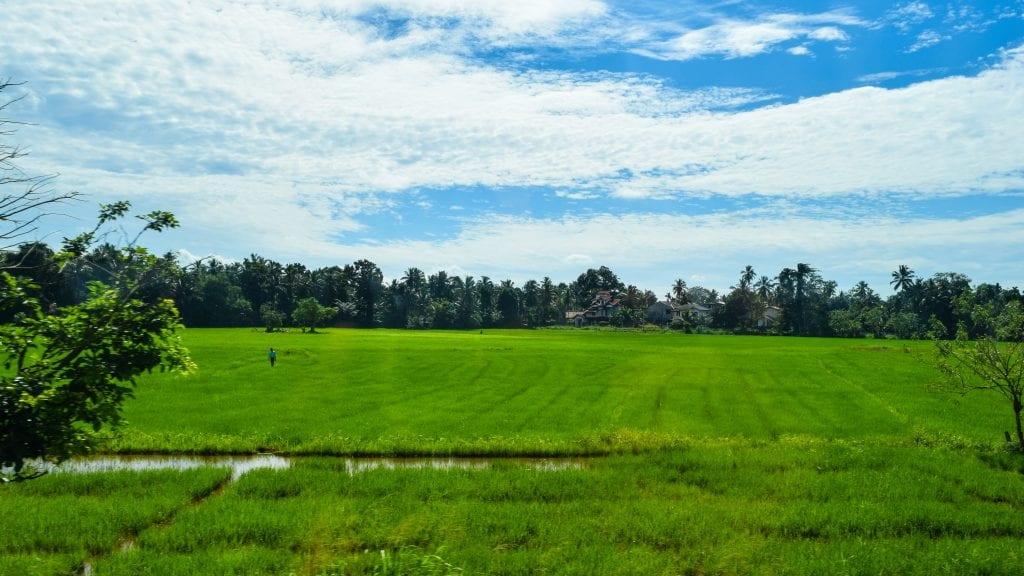 Countryside of Sri Lanka