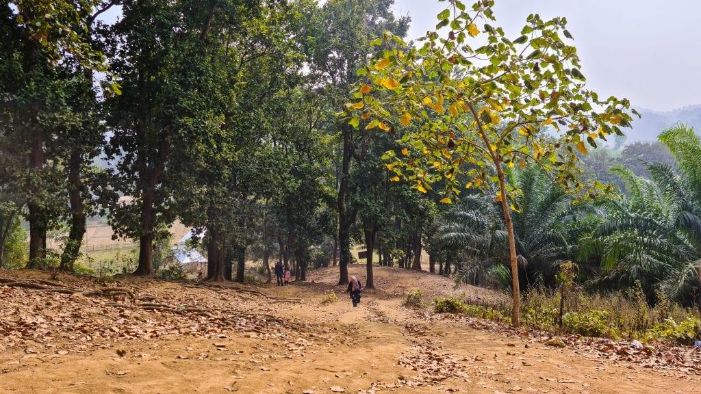 Hiking in the Orange Garden Hill