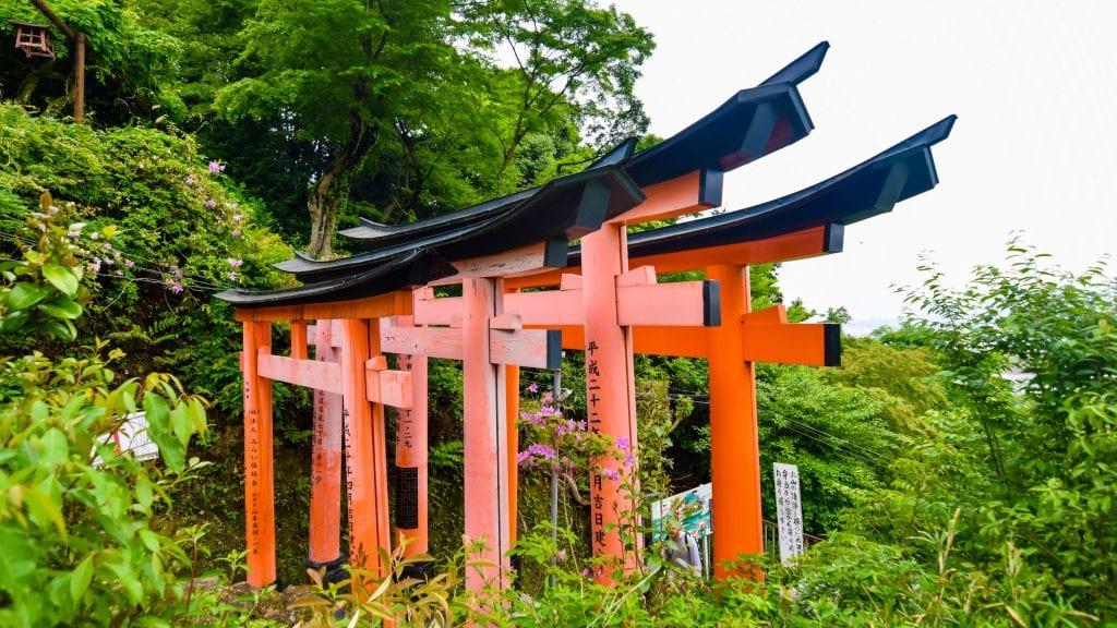 Torii on top of Fushimi Inari