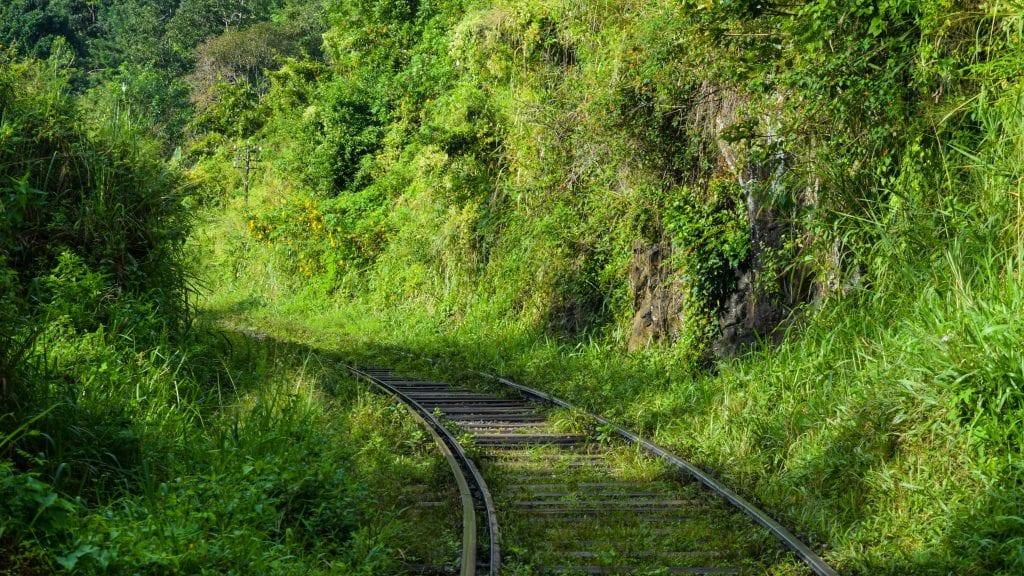 Beautiful Train Line in Ella