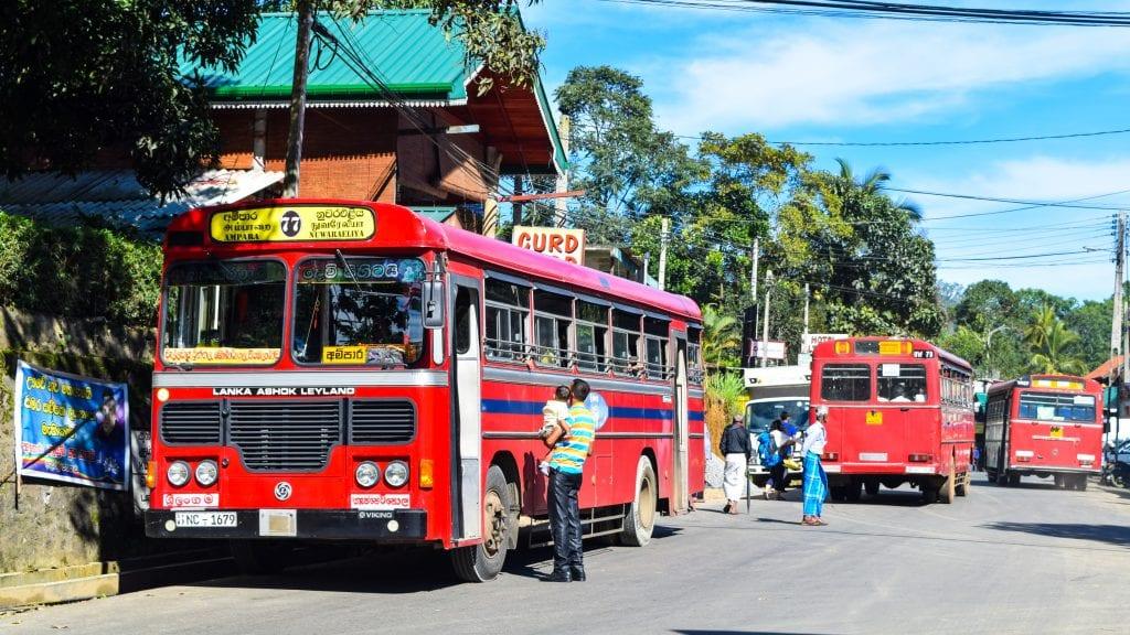 Local Transport in Ella