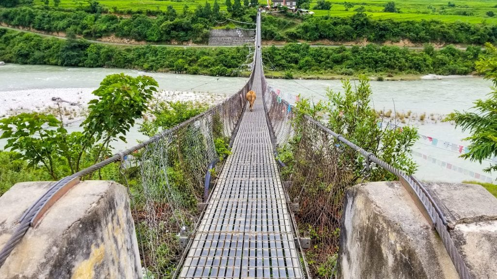 Punakha Suspension Bridge is one of the main places to visit in Punakha.