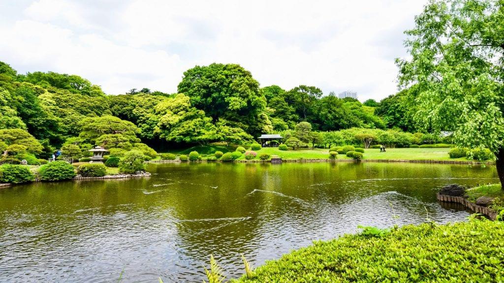 Shinjuku Gyoen National Garden - 4 Days Tokyo Itinerary