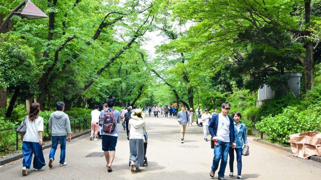 Ueno Park - 4 days Tokyo Itinerary