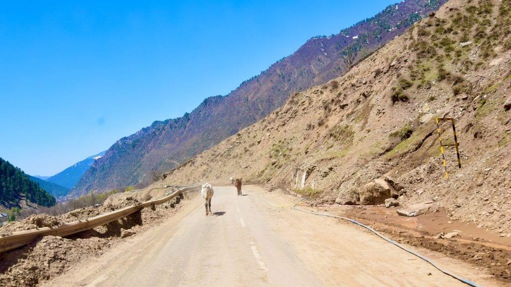 Kashmir Road Trip