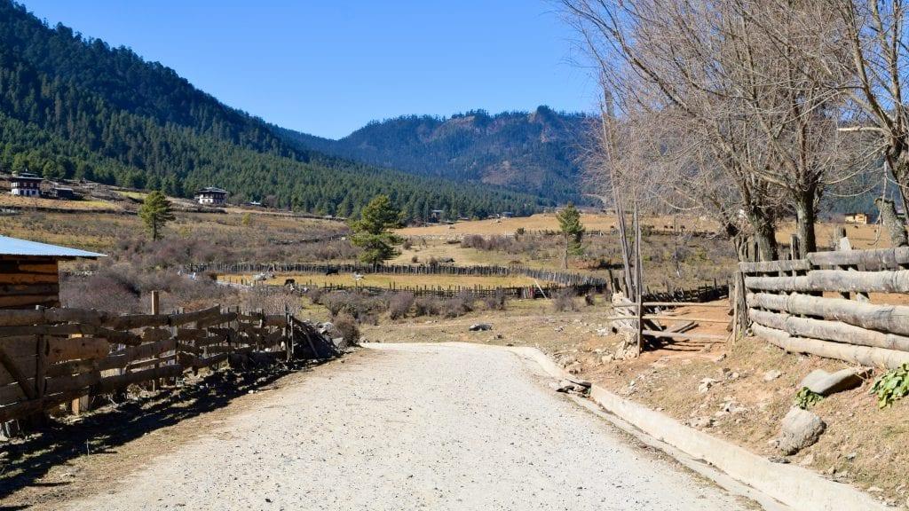 Road in Phobjikha Valley