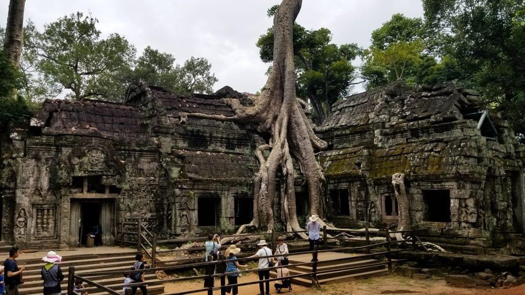 Ta Prohm in Cambodia - Temples in Siem Reap